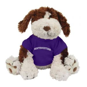 "Northwestern Wildcats Benjamin Wearing Purple ""Northwestern"" Tee Shirt"
