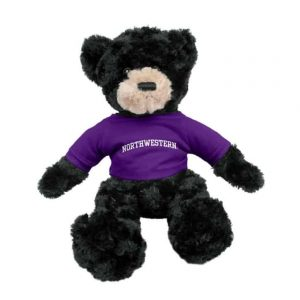 "Northwestern Wildcats Black Dexter Wearing Purple ""Northwestern"" Tee Shirt"