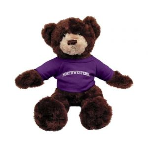 "Northwestern Wildcats Brown Dexter Wearing Purple ""Northwestern"" Tee Shirt"