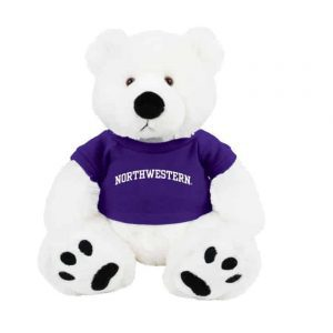 "Northwestern Wildcats Teddy Bear Scout Wearing Purple ""Northwestern"" Tee Shirt"