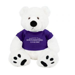 "Northwestern Wildcats Teddy Bear Scout Wearing Purple ""Somebody From Northwestern Loves Me"" Tee Shirt"