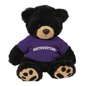 "Northwestern Wildcats Teddy Bear Cooper Wearing Purple ""Northwestern"" Tee Shirt"