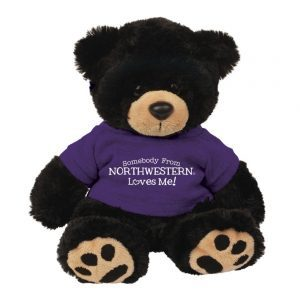 "Northwestern Wildcats Teddy Bear Cooper Wearing Purple ""Somebody From Northwestern Loves Me"" Tee Shirt"