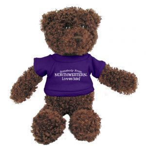 "Northwestern Wildcats Teddy Bear Chocolate Tropical Wearing Purple ""Somebody From Northwestern Loves Me"" Tee Shirt"