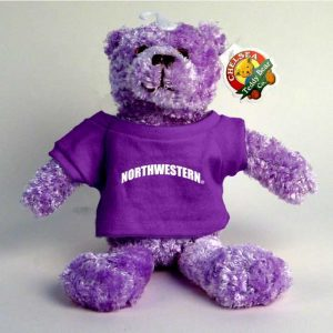 "Northwestern Wildcats Teddy Bear Purple Tropical Wearing Purple ""Northwestern"" Tee Shirt"