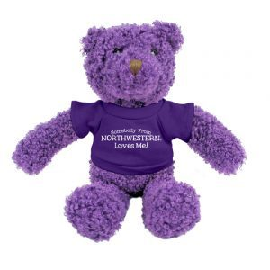 "Northwestern Wildcats Teddy Bear Purple Tropical Wearing Purple ""Somebody From Northwestern Loves Me"" Tee Shirt"