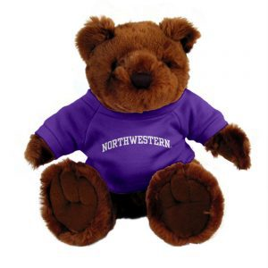 "Northwestern Wildcats Teddy Bear Dark Brown Knuckles Wearing Purple ""Northwestern"" Tee Shirt"