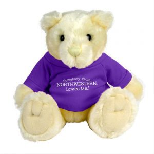 "Northwestern Wildcats Teddy Bear Vanilla Knuckles Wearing Purple ""Somebody From Northwestern Loves Me"" Tee Shirt"