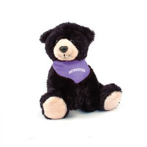 "Northwestern Wildcats Teddy Bear Wilson Wearing Purple ""Northwestern"" Bandana"