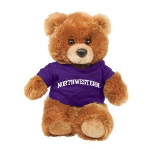 "Northwestern Wildcats Teddy Bear Brown Buster Wearing Purple ""Northwestern"" Tee Shirt"