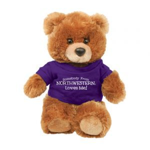 "Northwestern Wildcats Teddy Bear Brown Buster Wearing Purple ""Somebody From Northwestern Loves Me"" Tee Shirt"