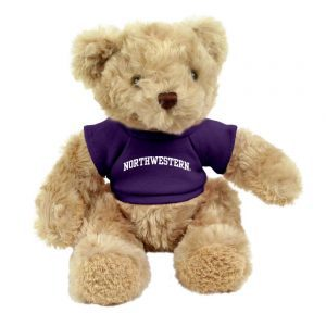 "Northwestern Wildcats Teddy Bear Honey Bear Wearing Purple ""Northwestern"" Tee Shirt"