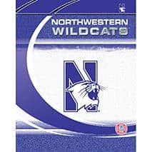 "Northwestern Wildcats Paper Folder 9.25""X12"""