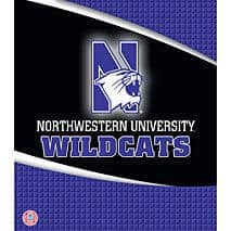 "Northwestern Wildcats 1"" Three Ring Binder"