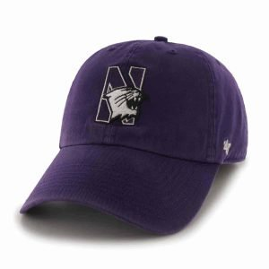Northwestern Wildcats 47 Brand Purple Fitted Franchise Hat With N-Cat Design