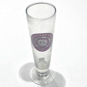Northwestern Wildcats 14 oz. Tall Beer Glass with Seal Design