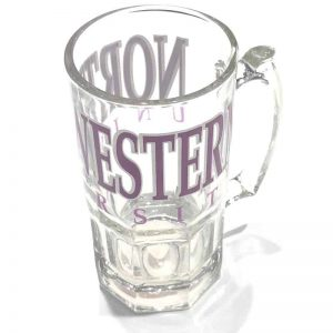 Northwestern University Wildcats 26 oz. Large Beer Mug with Northwestern Design