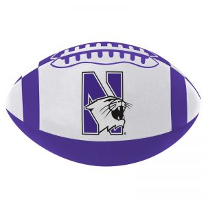 Northwestern Wildcats Softee Football 8.5""