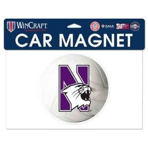 "Northwestern Wildcats Flexible Magnet with N-Cat Printed on a Multicolor Image of a Waterpolo Ball 6.1"" x 6.1"""