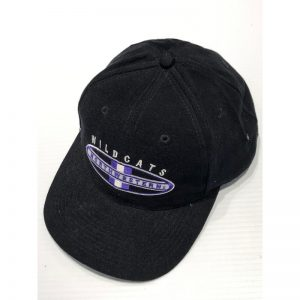 Northwestern Wildcats Black Authentic Vintage Snapback Flatrim Hat From Rose Bowl 1995 Year-3