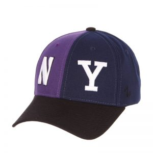 Northwestern Wildcats House Divided Hat with Yale Bulldogs
