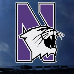 """Northwestern Wildcats Full Color Outside Application Decal with N-Cat Design 4.5""""X5.5"""""""