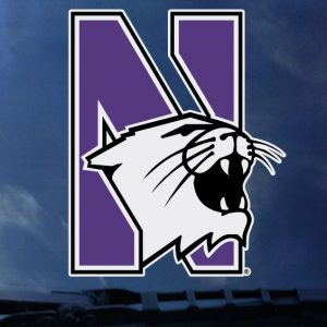 """Northwestern Wildcats Full Color Outside Application Decal with N-Cat Design 3.5""""X4.5"""""""