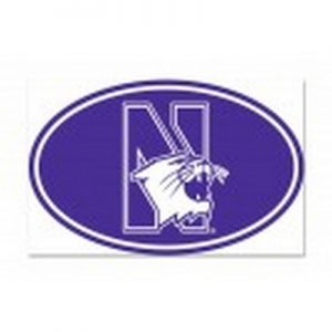 "Northwestern Wildcats Oval Purple Outdoor Magnets with the N-Cat Design 5"" x 7"""