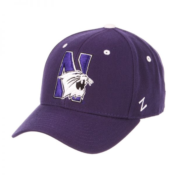 Northwestern Wildcats Zephyr Dark Purple Fitted Hat with Stylized N-Cat Design