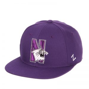 Northwestern Wildcats Zephyr Purple Fitted Hat with Stylized N-Cat Design