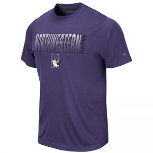 Northwestern University Wildcats Colosseum Men's Purple Hamilton S/S T-Shirt with N-Cat Design