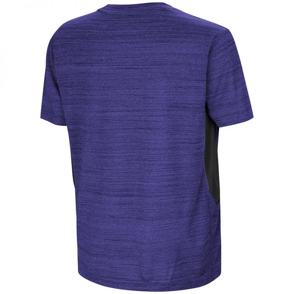 Northwestern University Wildcats Colosseum Youth Purple / Black Over The Fence S/S T-Shirt with Stylized N Design-Back