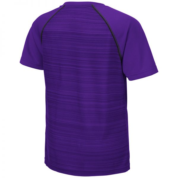 Northwestern University Wildcats Colosseum Youth Purple Buenos Aires S/S T-Shirt with N-Cat Design-Back