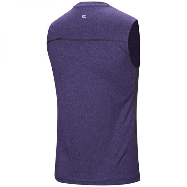 Northwestern University Wildcats Colosseum Men's Purple Hanging Curveball Sleeveless T-Shirt with Stylized N Design-Back