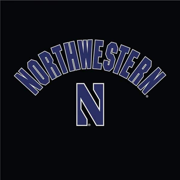 Northwestern University Wildcats Champion Men's Black Pullover Hockey Hooded Sweatshirt with Arch & Stylized N Design -Front Design