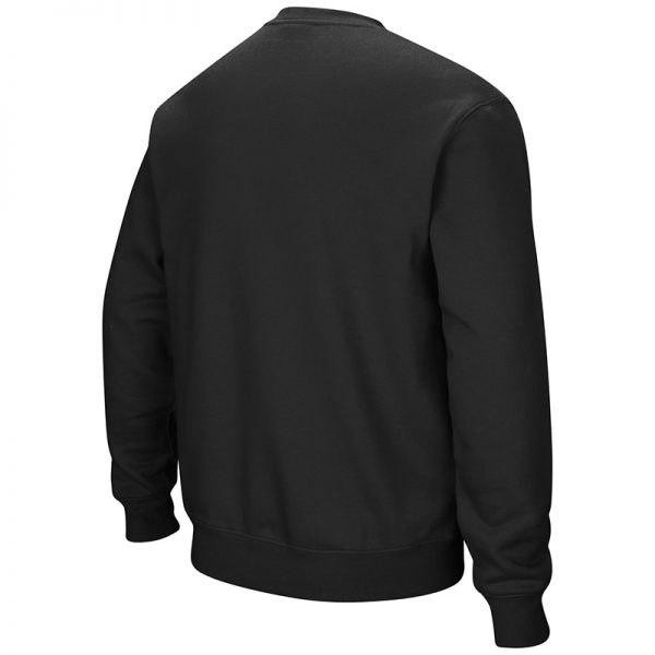 Northwestern University Wildcats Men's Black Colosseum Crewneck Sweatshirt With Sewn Arched Northwestern Over N-Cat Design -Back