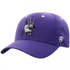 Northwestern University Wildcats Top Of The World Constructed Purple Velcroback Hat with The N-Cat Design