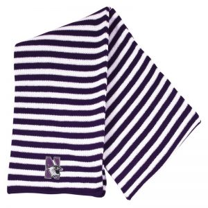 Northwestern University Wildcats Purple/White Micro-stripped Knit Scarf