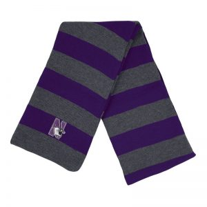 Northwestern University Wildcats Purple/Charcoal Rugby-stripped Knit Scarf