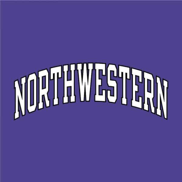 Northwestern University Wildcats Men's Purple Champion Super Heavy Reverse Weave Crewneck Sweatshirt with Two Color Arched Northwestern Printed Design-2