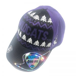 Northwestern University Wildcats Onefit Christmas & Holiday Inspired Hat