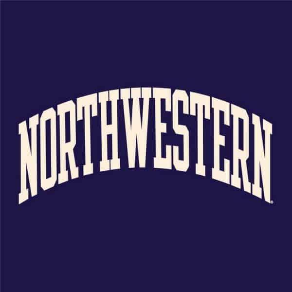 Northwestern University Wildcats Men's Purple Champion Super Heavy Reverse Weave Crewneck Sweatshirt with Creamy White Arched Northwestern Wool Sewn Appliqué Design -5