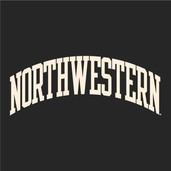 Northwestern University Wildcats Men's Granite Heather Champion Eco Powerblend Crewneck Sweatshirt with Creamy White Arched Northwestern Wool Sewn Appliqué Design -3