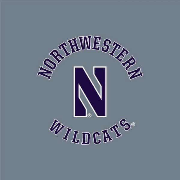 Northwestern University Wildcats Men's Under Armour True Grey Heather Armour Fleece Pants-2