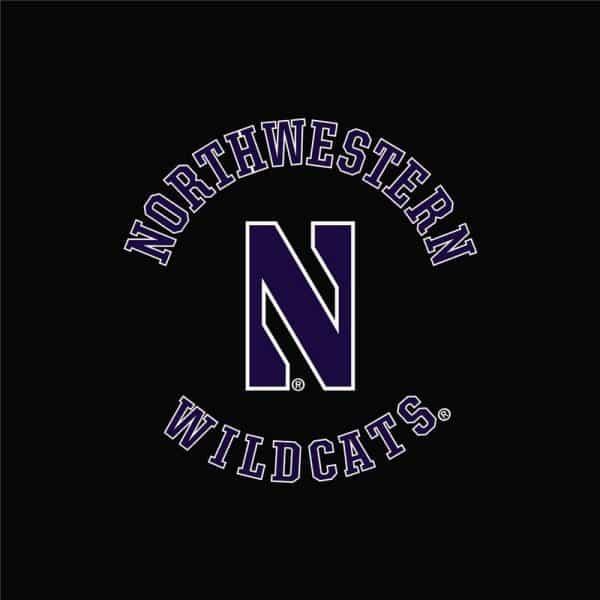 Northwestern University Wildcats Men's Under Armour Black Armour Fleece Pants-2