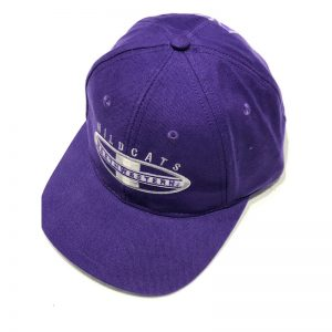 Northwestern University Wildcats Purple Authentic Vintage Snapback Flatrim Hat From 1995 Rose Bowl Year