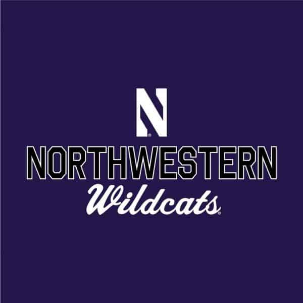 Northwestern University Wildcats Ladies Under Armour Purple / Graphite Training Camp Performance Cotton Short Sleeve Tee-2