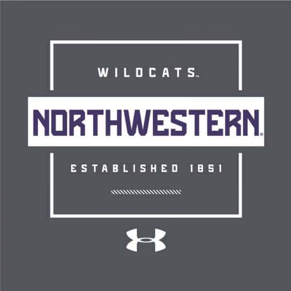 Northwestern University Wildcats Men's Under Armour Pitch Grey Tech Novelty Short Sleeve Tee -2