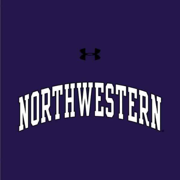 Northwestern University Wildcats Ladies Under Armour Purple Performance Cotton Short Sleeve Tee With Northwestern Arch Design-2