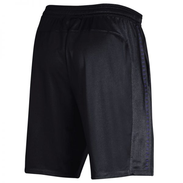 Northwestern University Wildcats Men's Under Armour Black Raid Short -3